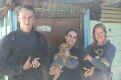 hund&katt sydafrika5
