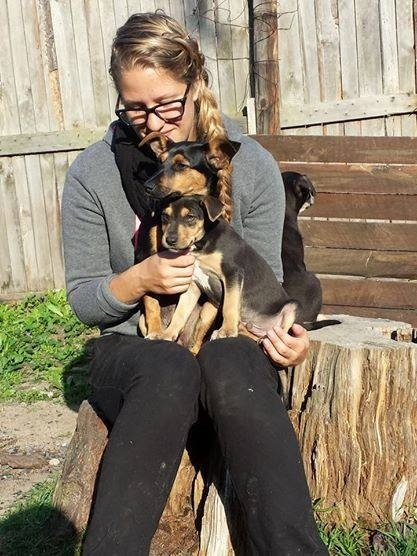 hund&katt sydafrika7