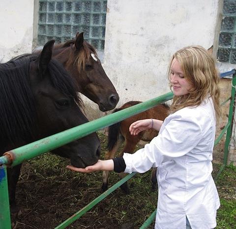 Plugga till veterinär utomlands – Linnea
